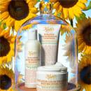 Sunflower Color Preserving Hair Care von KIEHL'S
