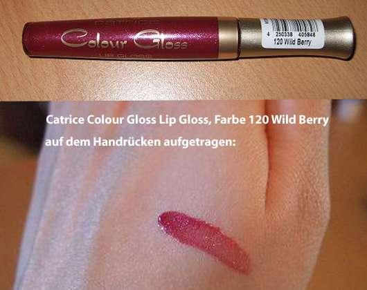 Catrice Colour Gloss Lip Gloss, Farbe 120 Wild Berry