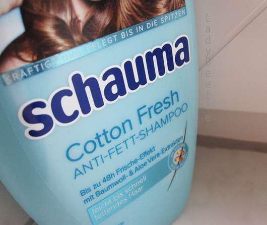 Schauma Cotton Fresh Anti-Fett-Shampoo