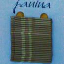 "KiK Haarschieber ""Janina"" (Gold)"