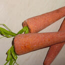 LUSH Bunch of Carrots (Multiples Schaumbad; LE)