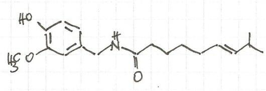 Strukturformel von Capsaicin
