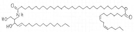 Abb.4: Struktur von Ceramid 1