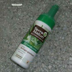 Produktbild zu Terra Naturi Naturkosmetik Sanfter Reinigungsschaum
