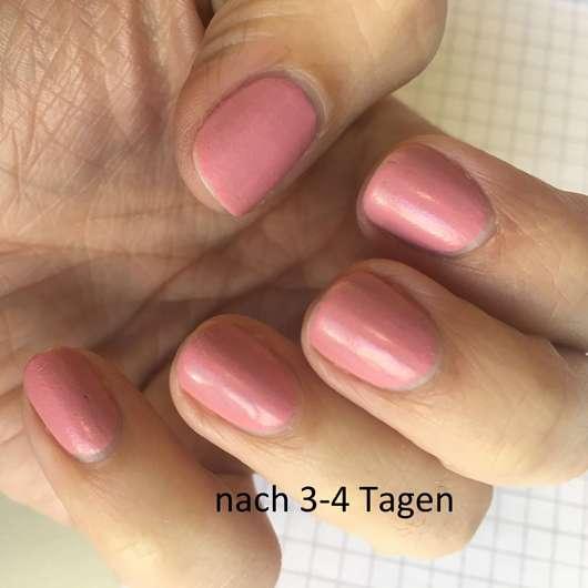 Fingernägel mit ANNY Matte Powder Effect Polish, Farbe: 247.30 lovebird - nach 3-4 Tagen