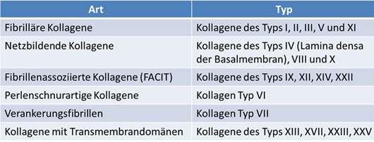 Tabelle: Wichtige Mitglieder der Kollagenfamilie (1) (Version vom März 2015)