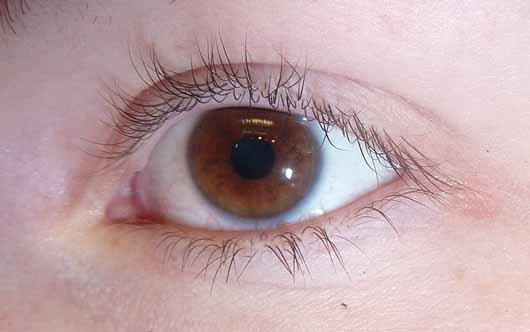 ARTDECO x Claudia Schiffer Make Up Super Long Lash Mascara, Farbe: 01 Black - Wimpern ohne Produkt