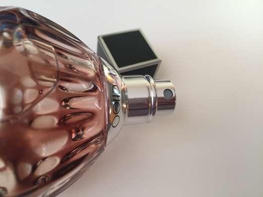 Sprühkopf des Jimmy Choo Pour Femme Eau de Parfums