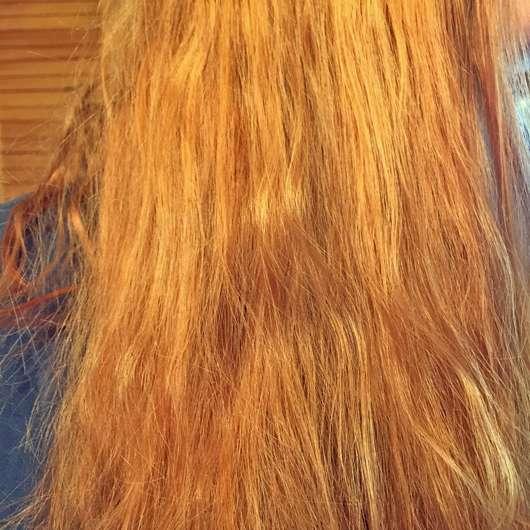 Haare zu Testbeginn (mit Tönung)