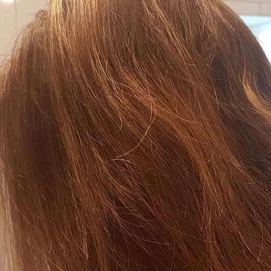 alverde Glanz Shampoo Bio-Rohrzucker - Haare vor der Anwendung
