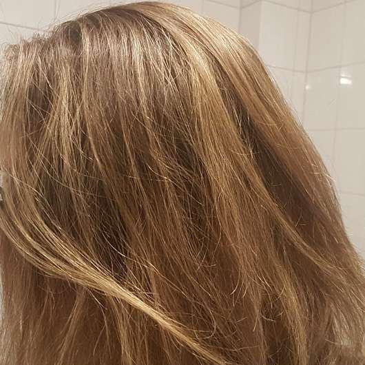 Haare vor der Testphase des Luvos Shampoos (mit ultrafeiner Heilerde)