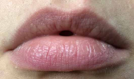 Melvita Bio-Honig Repairing Lip Balm -Lippen ohne Produkt