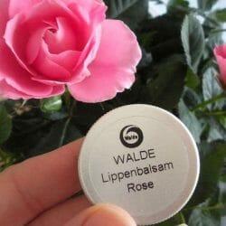 Produktbild zu WALDE Lippenbalsam Rose