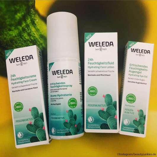 Was Feigenkaktus auf euer Haut bewirken kann