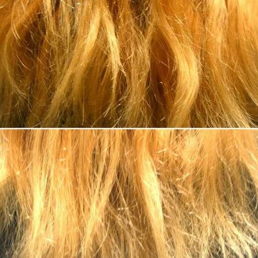 oben: Haare zu Testbeginn // unten: nach Testende - Argand'Or Arganöl Haaröl