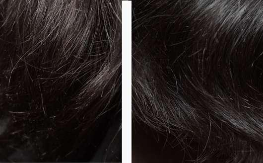 links: Haare zu Testbeginn // rechts: Haare nach Testende